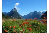<p> O excursie pentru doua persoane in Noua Zeelanda, un set format din decantor din sticla si doua pahare, 2 x ceas OMV BIXXOL, 3 x jacheta OMV BIXXOL, 12 x tricou polo;<br /> </p>