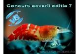 Produse acvaristice in valoare de 200, 150, 100 RON
