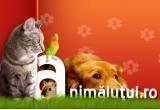 2 kg de de hrana ProFormance® pentru pisici, 3 kg de hrana ProFormance® pentru caini
