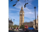 Un week-end prelungit la Londra pentru 2 persoane, Un box de colectie de la A&A RECORDS