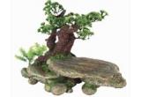 un copac pentru reptile