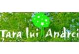 finantare in limita a 10.000 Euro, finantare in limita a 8.000 Euro, finantare in limita a 6.000 Euro; 20 x participare in Tabara din Tara lui Andrei, statiunea Cheia, judetul Prahova (pentru elevi); 20 x laptop (pentru cadrele didactice);